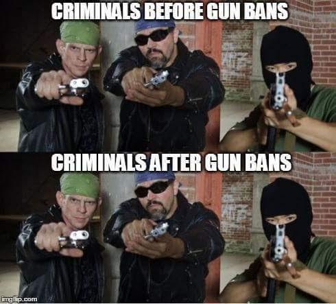 sgs gun bans